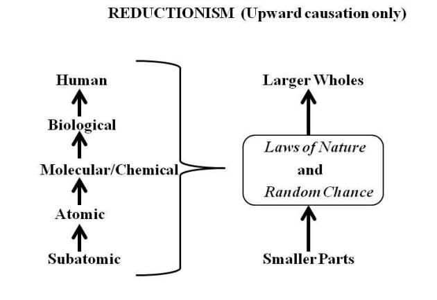 reductionism