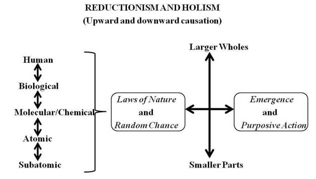 reductionism_and_holism
